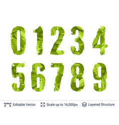 spring green bright numbers set vector image