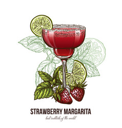 strawberry margarita cocktail with berries vector image