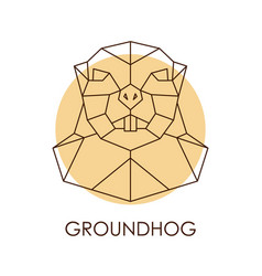 geometric abstract groundhog head wild animal vector image