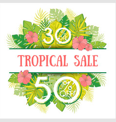 summer sale background with tropical palm leaves 1 vector image