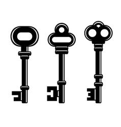 Old Vintage Keys Set on White Background vector image vector image