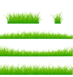 grass borders set plant panorama isolated vector image