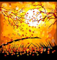 Hello autumn fall under moonlight vector