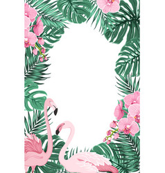 Jungle leaves orchid flowers flamingo birds frame vector