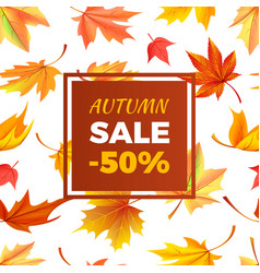autumn sale -50 off in frame leaves foliage vector image vector image