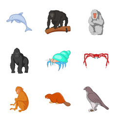 ape icons set cartoon style vector image