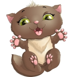 beautiful cat on a white background vector image vector image