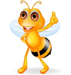 Bee cartoon thumb up vector