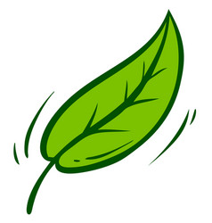 cartoon green leaf with branch icon vector image