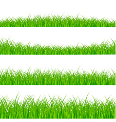 grass borders set plant panorama vector image