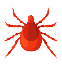 mite red icon insect and parasite symbol vector image