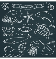Sealife chalkboard set 1 vector