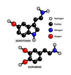 Structural formulas happiness hormones vector