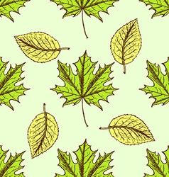 Sketch leaves in vintage style vector image vector image
