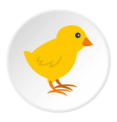 Chick icon circle vector