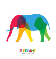 creative elephant animal design vector image