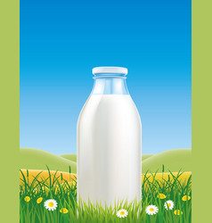 milk bottle in grass field with chamomile vector image