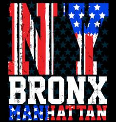 New york city america flag print and varsity vector