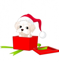 puppy gift vector image