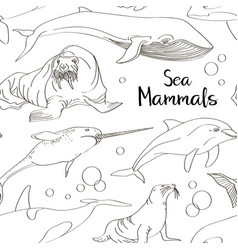 sea mammals animal collection icons pattern vector image