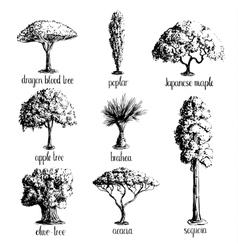 Set of hand drawn tree sketches vector