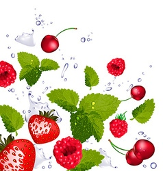 Splash of Berries Cherries and Lime vector