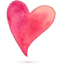 Watercolor painted heart for your design vector image