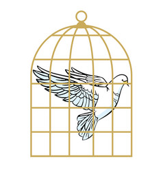 White dove in a cage symbol lack freedom vector