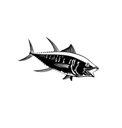 yellowfin tuna thunnus albacares or ahi swimming vector image