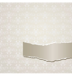 Gray background with torn paper vector image vector image