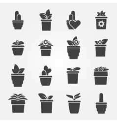 Houseplant icons set vector image