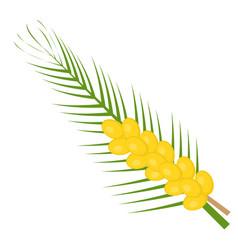 fresh dates icon flat cartoon style yellow fruit vector image