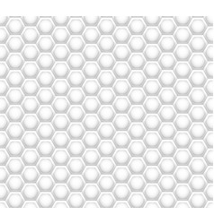 3d like honeycomb white texture vector image