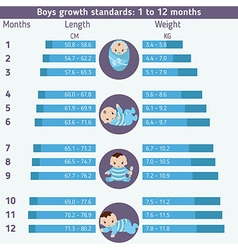 Child development infographics vector image