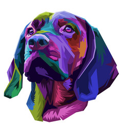 colorful dog head on pop art style vector image