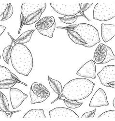 hand drawn sketch vector image