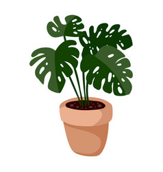Hygge potted monstera plant cozy lagom vector
