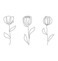 Line art flowers minimalism elegant vector