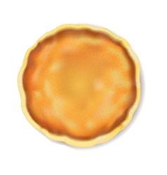 pancake isolated white background vector image