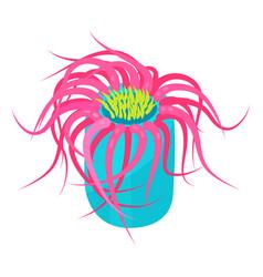 Sea anemone icon bright natural underwater coral vector