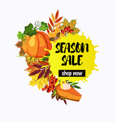season sale design with fall leaves and pumpkin vector image