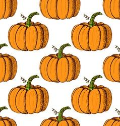 Sketch pumpkin in vintage style vector image