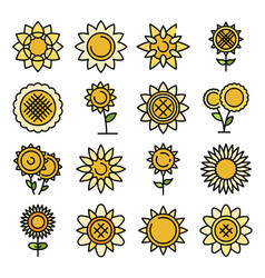 sunflower icons flat vector image