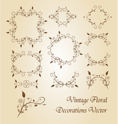 vintage floral decoration vector image