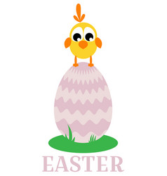 card with chick vector image vector image