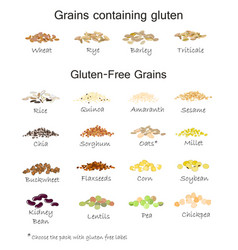 A variety gluten free and containing gluten vector