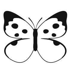 big butterfly icon simple style vector image