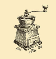 hand-drawn retro coffee grinder vintage sketch vector image