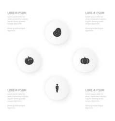 icon vegetables set of tomato ingredient vector image