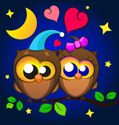 Love two owls vector